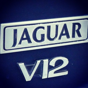 Jag V12 badge