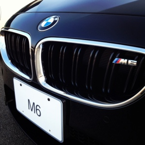 BMW M6 grille