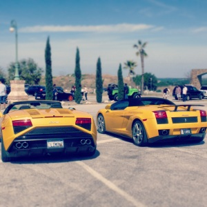 Lambo yellow duo