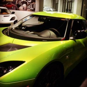 Lotus green 2