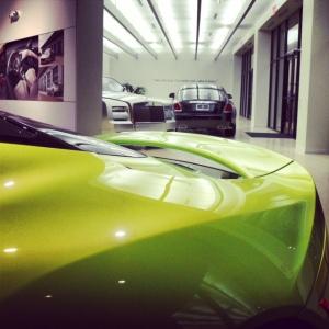 Lotus green 3