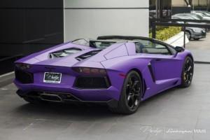 Lambo purple 2